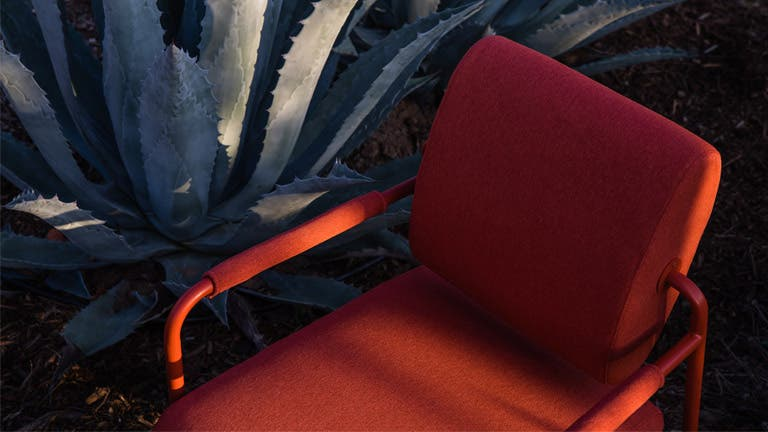 Red Axle lounge chair next to an agave plant